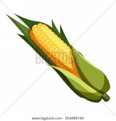 Corn Icon. Cartoon Illustration Of Corn Icon For Web