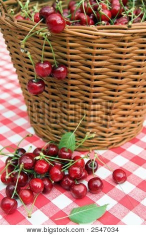 Red Picnic Cloth With Cherry 5.