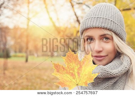 Autumn Woman With Yellow Maple Leaf Outdoors. Romantic Girl In Fall Park