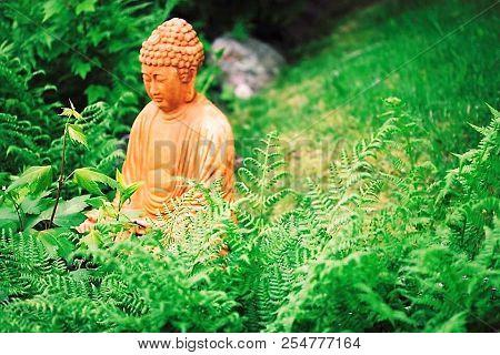 Garden Budha Sitting In The Ferns Soft Light