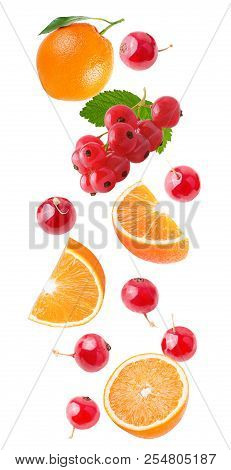 Flying Orange And Red Currant Isolated On White