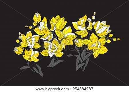Modern Style Orchid In Yellow And Black Colors Design Element For Header, Card, Invitation, Poster,