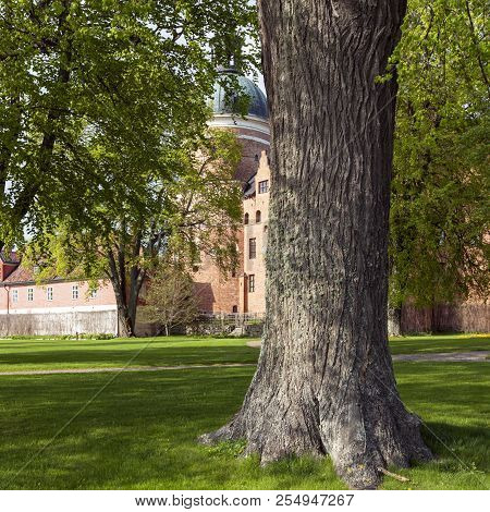 Gripsholm Castle, Sweden On May 11. View Of The Park Surrounding The Castle In Springtime On May 11,