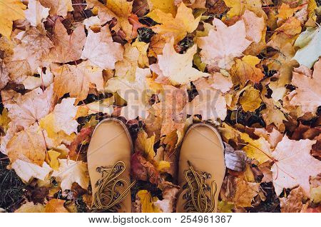 Casual Unisex Boots With Autumn Fallen Leaves. Autumn Fall Scene. Conceptual Image Of Legs In Boots