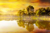 Foggy golden sunrise by the fishing lake at Trojan Park in Rainier Oregon poster