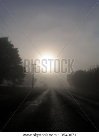 Misty Morning New Zealand