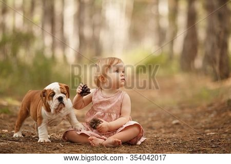 Cute Little Baby With An English Bulldog Puppy, Hugging. Place For The Inscription. Concept: Relatio