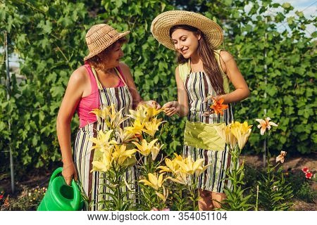 Womens Day, Mothers Day. Senior Woman And Her Daughter Gathering Flowers In Garden Taking Care Of Li