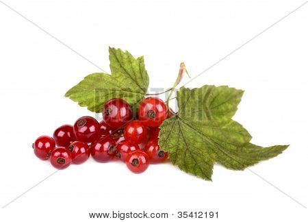Red Currant With Green Leaves Isolated On White Background