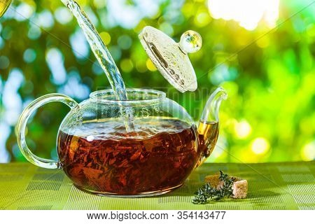 Tea ceremony, pouring tea from a teapot into a tea cup on a background of beautiful nature bokeh.
