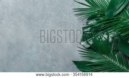 Palm Leaves On Gray Stone Background. Tropical Leaves Top View Or Flat Lay. Copy Space For Text Or D