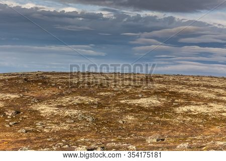 Colorful Yellow Background Of The Northern Foggy Mountains In Autumn Tundra, Arctic, Kola Peninsula,