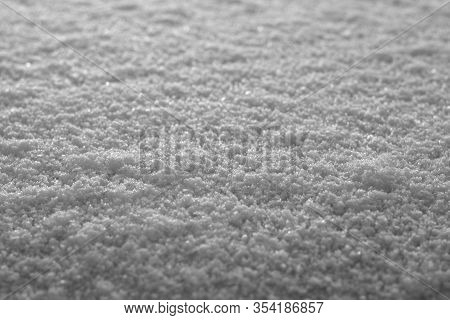 Snow On Sun Light With Blur Effect In Black And White. Seasonal Background For Wallpaper Or Design.
