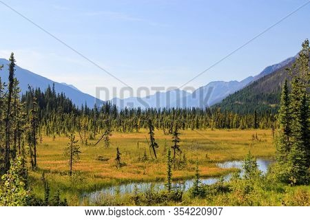 Beautiful Canadian Landscape Of A Marsh With Small River And Trees.