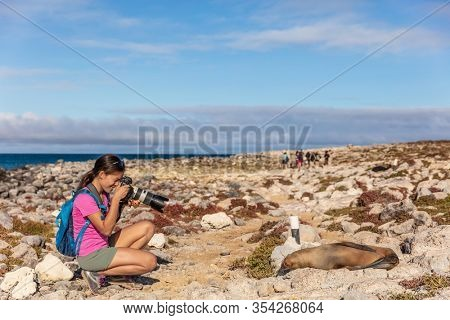 Galapagos tourist taking pictures of Galapagos Sea Lion on North Seymour Island, Galapagos Islands. Amazing animals and wildlife during Galapagos cruise ship vacation travel