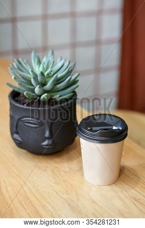 Paper Coffee Cup With Ready To Go Or Take Away Coffee. With Plant Succulent
