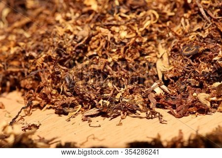 Rolling Tobacco Leaves Macro Background Stock Photography High Quality