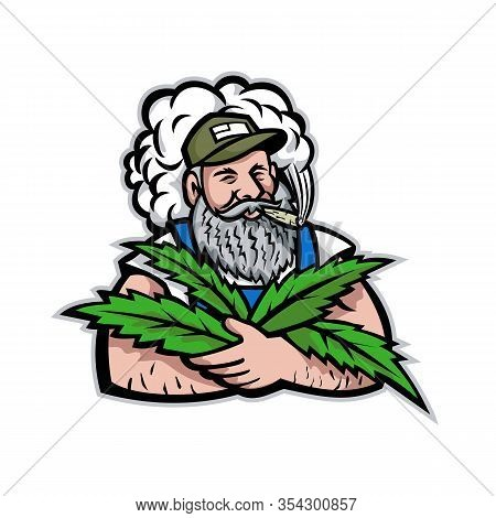 Mascot Icon Illustration Of An American Organic Hemp Farmer With Beard Smoking And Holding Cannabis