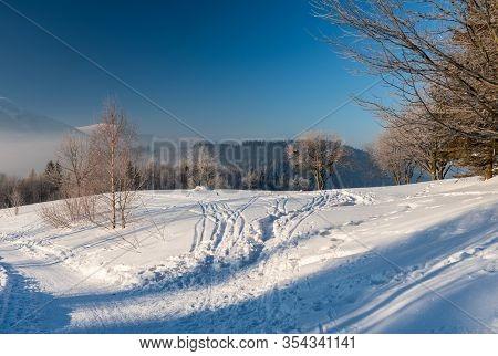 Freezing Winter Morning On Butoranka Bellow Lysa Hora Hill In Moravskoslezske Beskydy Mountains In C