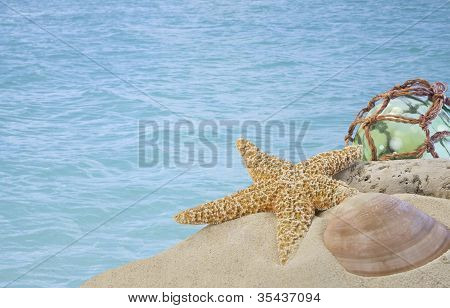 Seashells On Sand With Glass Ball With Blue Water
