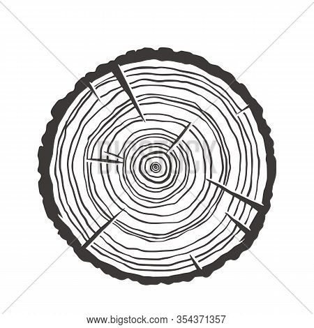 Wood Texture Rings Slice Of Tree Wooden Stump