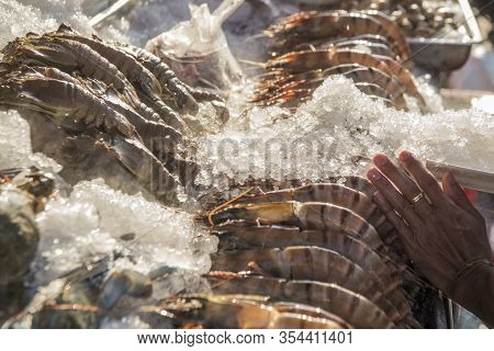 Asia Thailand Hua Hin Night Market Seafood