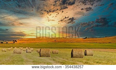 landscape hayfield with hay rolls, against a cloudy blue sky.