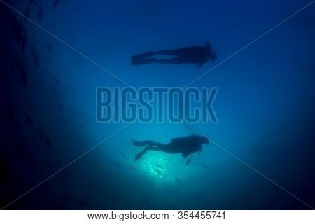 Scuba diving underwater. Scuba divers and fish silhouette against ocean surface
