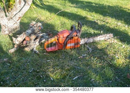 Chain Saw And Cut Branches In A Garden After Trimming A Tree
