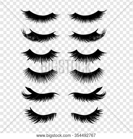 Long Black Lashes Vector Set. Different Types Beautiful Eyelashes