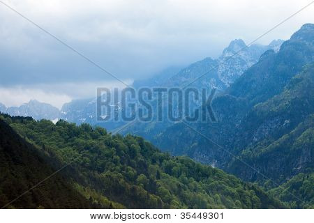 Alps And Forest