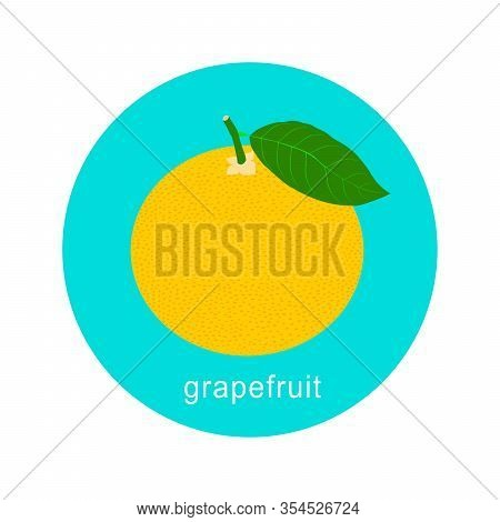 Vector Grapefruit Icon Isolated On White Background.  Flat Blue Circle Icon With Fruit. Healthy Food