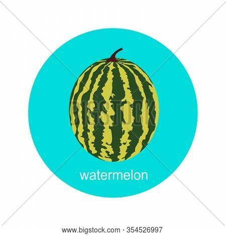 Vector Whole Watermelon Icon Isolated On White Background.  Flat Blue Circle Icon With Fruit. Health