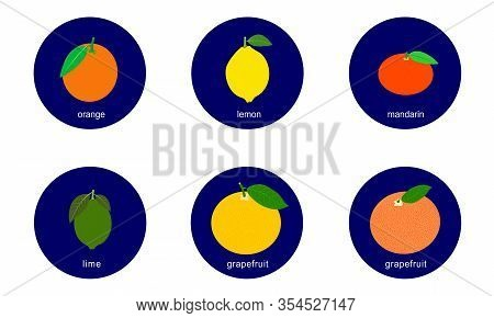 Set Of Citrus Fruits Vector Icons Isolated On White Background.  Flat Blue Circle Icon With Healthy