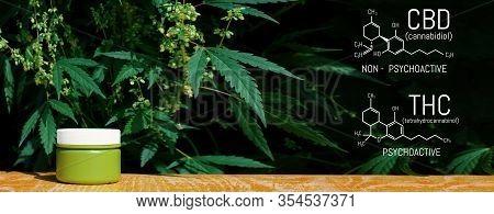Marijuana Cbd Vs Thc Poster With Scientific Formula, Cbd Elements And Thc In Marijuana And Medical H