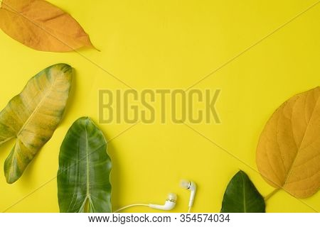 Copy Space On Leaves Frame On Yellow Background.