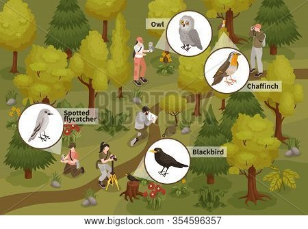 Ornithologists Observing Monitoring Birds Traits Behavior Isometric Composition With Blackbird Owl S