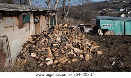 Wood Firewood Chopped Into A Pile.wood Firewood Chopped Into A Pile.
