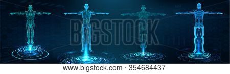 Human Body Polygonal Wireframe And Transparent Human Body With Anatomy Of The Structure Of Internal