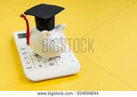 Student Loan Payment Calculation, Scholarship Or Saving For School And Education Concept, White Pigg