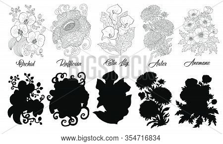 Set Of Black And White Outline Flowers - Orchid, Rafflesia, Calla, Aster, Anemone. Vector Botanical