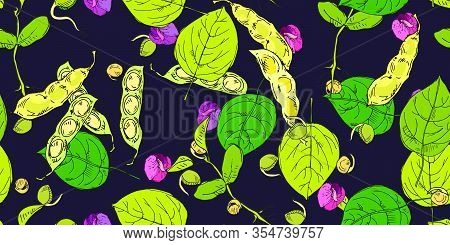 Seamless Pattern With Legume Crops Hand Drawn In Line Art Style Isolated On Dark Background. Vector