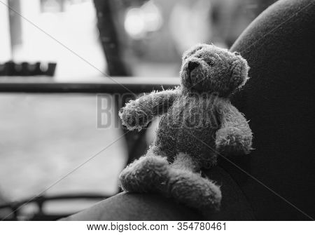 Teddy Bear Sitting On Arm Chair In The Cafe Or Coffee Shop With Ray Of Light In Afternoon,the Forgot