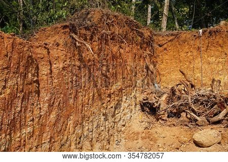 Deforestation Close Up With Roots, Rocks Showing In Sunlight. Red And Yellow Rocks Where Soil Was Du