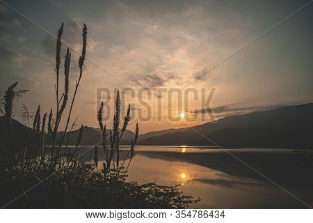 Wild-grass Flower With Scene Of Lake Mountain Sunset.  Landscape At Dusk .beautiful Sky At Sunset In