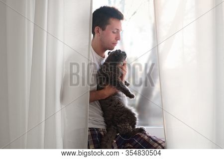 Young Man In The White Shirt And Pajama Petting Grey Fluffy Cat. Life With Domestics Animcals.