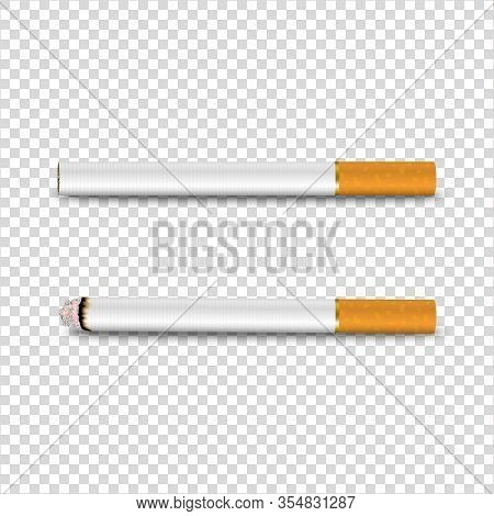 Vector 3d Realistic Clear Blank Whole And Lit Cigarette Icon Set Closeup Isolated On Transparent Bac