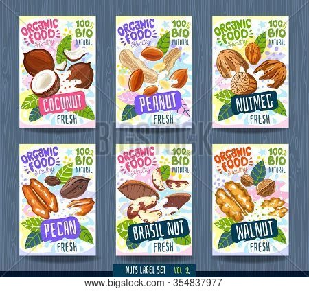 Abstract Splash Food Label Template. Nuts, Herbs, Fruits, Package Design. Coconut, Peanut, Nutmeg, P