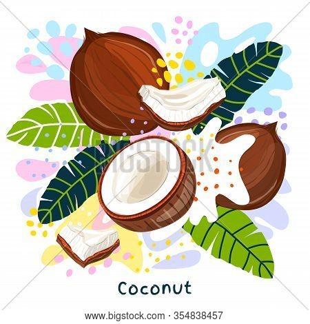 Fresh Coconut Milk Splash Organic Food Condiment Splatter. Herbs Nuts. Abstract Colorful Art Splatte