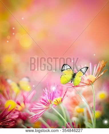 Beautiful Butterfly And Nice Flowers. Summer Landscape.